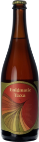 Jester King Enigmatic Taxa