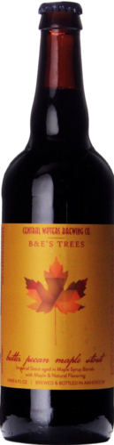 Central Waters Butter Pecan Maple Stout